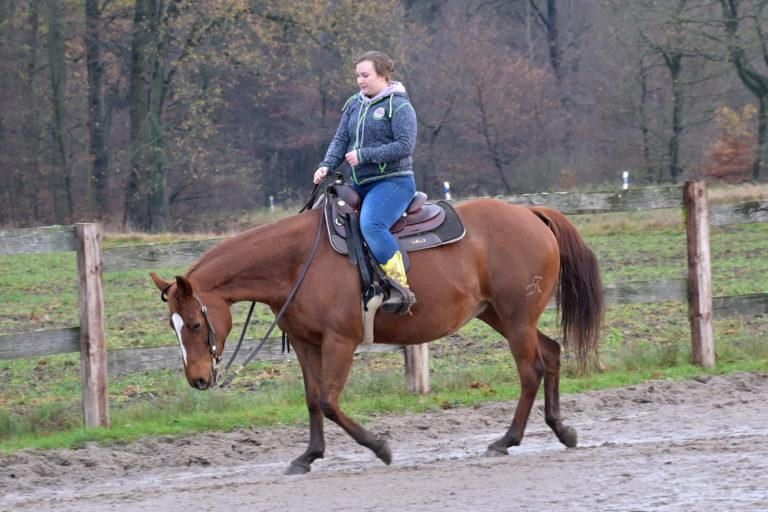 Lea Mikaelyan zeigt auf DR Dreamy BH Custom wie Westernreiten auszusehen hat: Lockere Zügel und das Pferd macht alles ohne Hilfe des Reiters.